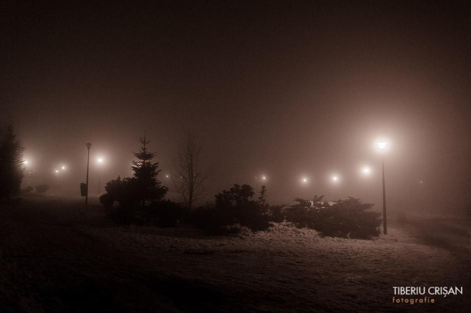 noapte-cu-ceata-in-parc-1