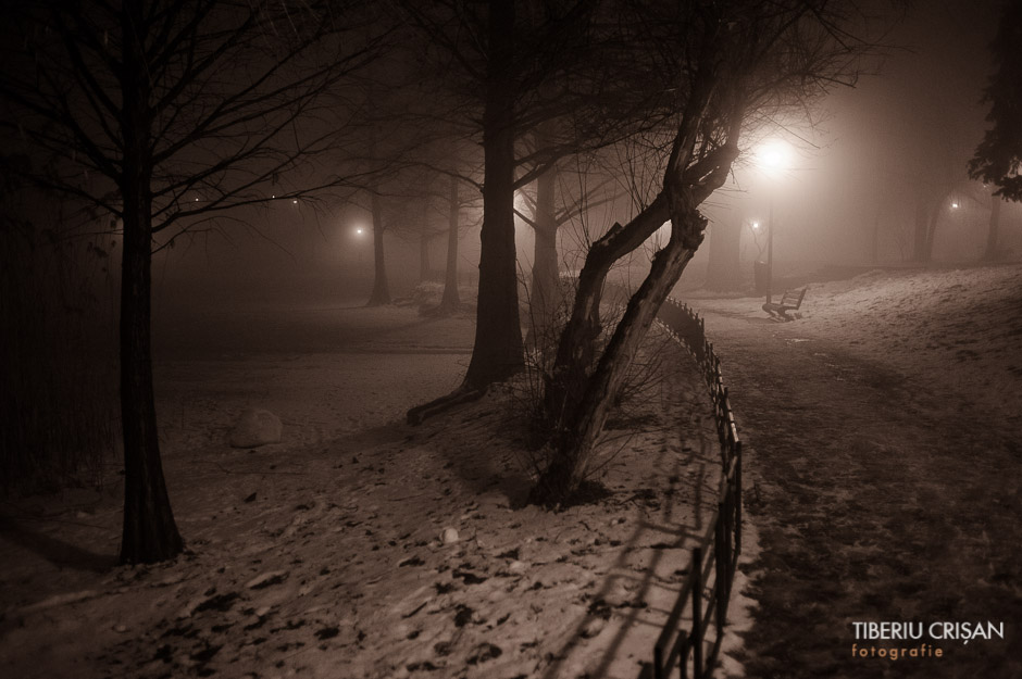 noapte-cu-ceata-in-parc-10