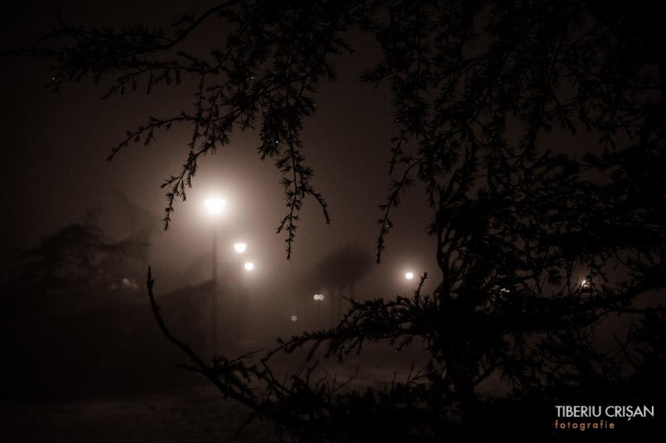 noapte-cu-ceata-in-parc-25