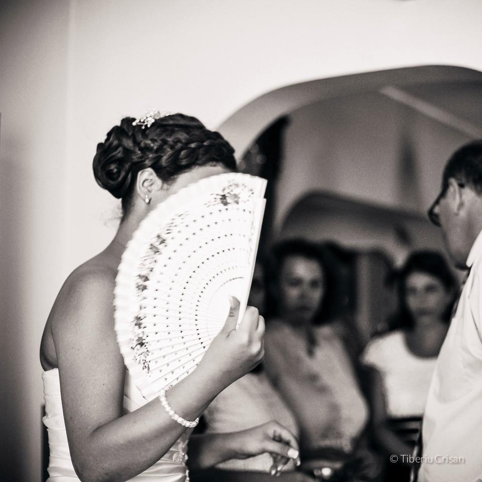 nunta-alex-alex-005