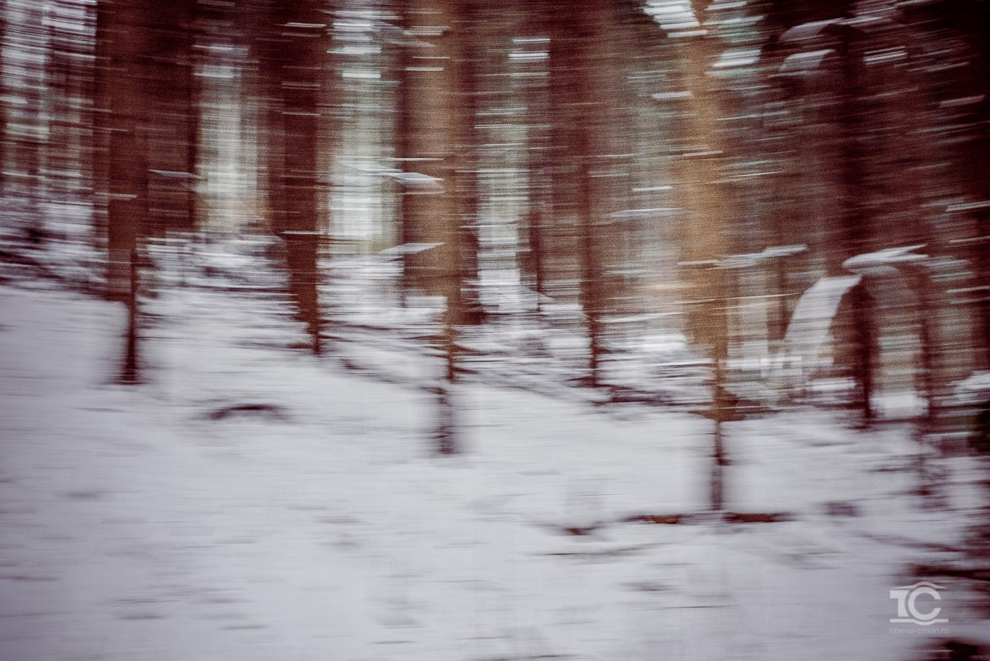 Iarna tarzie in Feleac