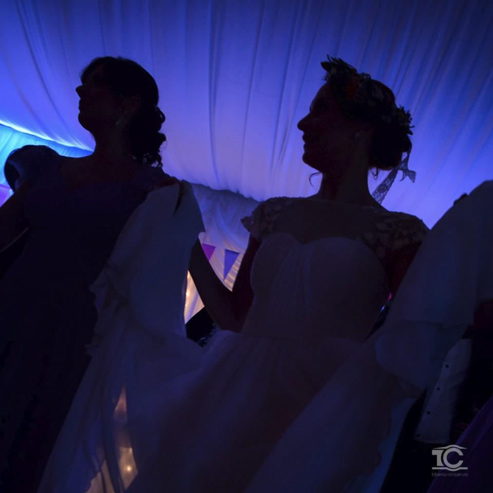 nunta-dana-andrei-031