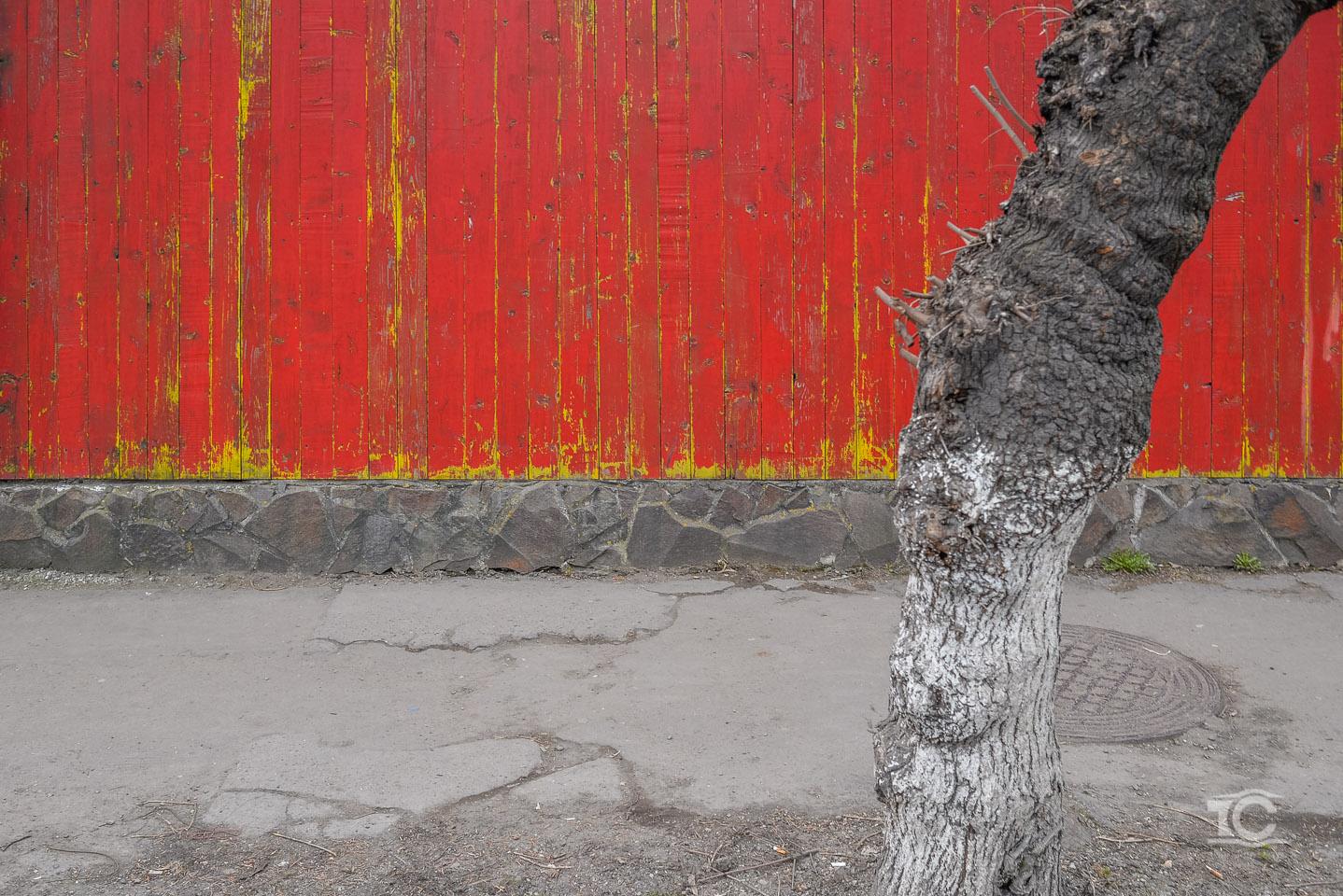 targu-mures-2015-03-009