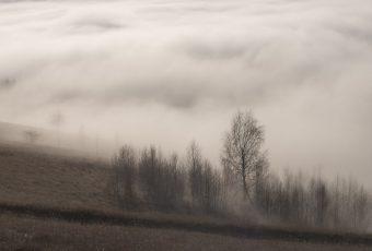 Exercitii pe ritm de ceata (cont)